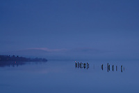 A moody Loch Lomond Shores at dawn, Loch Lomond & The Trossachs National Park<br /> <br /> Copyright www.scottishhorizons.co.uk/Keith Fergus 2011 All Rights Reserved