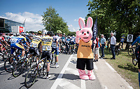 sponsor bunnies at the actual race start<br /> <br /> Dwars door het Hageland 2019 (1.1)<br /> 1 day race from Aarschot to Diest (BEL/204km)<br /> <br /> ©kramon