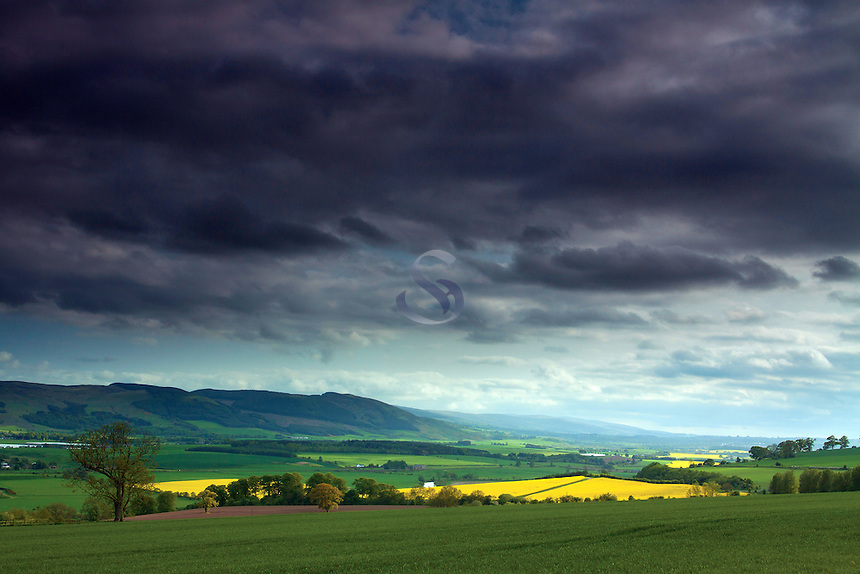 The Ochil Hills from near Fortevoit, Perthshire