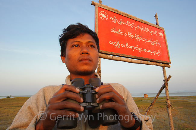 """A young man named Ren Noung Soe has become a champion for Spoon-billed Sandpipers and against bird hunting at Nan Thar Island. He is a tour guide turned bird lover who is receiving support from some western ornithologists who identified the site and are working with him to protect it. He rents the island from the government. and has put up signs saying """"No hunting and killing birds and turtles on Nan Thar Island"""".  The local village is generally supportive but they probably still do some opportunistic hunting when Ren is not there (which is most of the time). Rakhine State, Myanmar. January."""