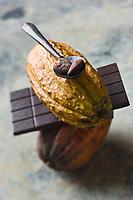 Europe/France/Ile-de-France/75006/Paris: Chocolat chez Christian Constant Chocolatier Confiseur- Chocolat et Cabosses , fruit  du cacaoyer - Stylisme : Valérie LHOMME // Europe / France / Ile-de-France / 75006 / Paris: Chocolate at Christian Constant Chocolatier Confiseur - Chocolate and Cabosses, cocoa tree fruit - Styling: Valérie LHOMME