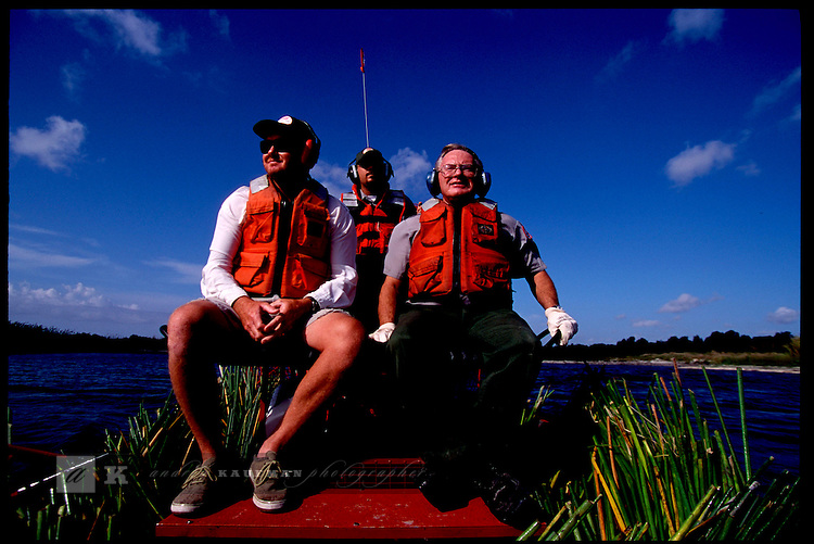 MAY 21, 2001. LAKE OKEECHOBEE, FLORIDA. Lake conditions are at about 9.5 three feet under average. Conditions are expected to get worse in the next few months. On an ARMY CORP of ENGINEERS Airboat BULRUSH plants are taking to a planting area that is exposed while the lake's water level is low. It aides the fish's habitat.