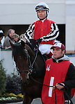 Sinister Spinner and Jon Court in the 8th race at Churchill Downs.  November 24, 2012.