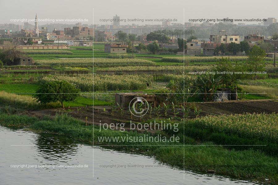 EGYPT, Cairo, farming at river Nile, due to massive construction and city growth the fertile arable land is decreasing  / AEGYPTEN, Kairo, Landwirtschaft am Nil, durch zunehmenden Bau von Haeusern schrumpft die fruchtbare landwirtschaftliche Flaeche
