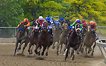 May 16, 2015: Holy Boss with Ricardo Santana, Jr. up win the Chick Lang Stakes at Pimlico Race Course in Baltimore, Maryland. Zoe Metz/ESW/CSM