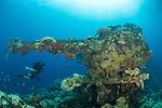 The wreck of the Fujikawa Maru, Truk Lagoon, Chuuk