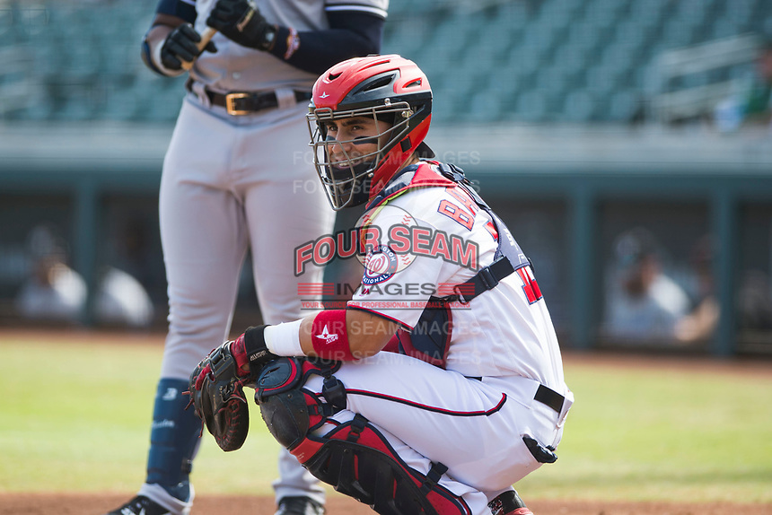 Salt River Rafters catcher Tres Barrera (12), of the Washington Nationals organization, during an Arizona Fall League game against the Glendale Desert Dogs at Salt River Fields at Talking Stick on October 31, 2018 in Scottsdale, Arizona. Glendale defeated Salt River 12-6 in extra innings. (Zachary Lucy/Four Seam Images)
