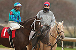 February 6, 2021: Strike Power (1) with jockey Ricardo Santana Jr. aboard before the running of the King Cotton Stakes at Oaklawn Racing Casino Resort in Hot Springs, Arkansas on February 6, 2021. Justin Manning/Eclipse Sportswire/CSM
