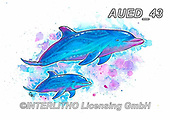 Carlie, REALISTIC ANIMALS, REALISTISCHE TIERE, ANIMALES REALISTICOS, paintings+++++,AUED43,#A#, EVERYDAY,dolphin,dolphins