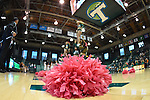 Tulane women's basketball downs SMU, 76-64,  on Valentine's Day and improves their record to 17-8 for the 2015-16 season.