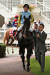 11/09/2011,King of Arnor, jockey Pierre-Charles Boudot, trained by André Fabre, owned by Ballygallon Stud Ltd, arrived fifth out of six