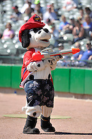Homer the mascot of the Peoria Chiefs performs prior to the game against the Peoria Chiefs at Dozer Park on July 28, 2014 in Peoria, Illinois. The Loons won 4-0.   (Dennis Hubbard/Four Seam Images)