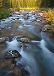 rushing water of lake fork of rock creek in the absaroka beartooth wilderness in montana