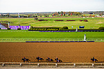 November 5, 2020: The Aidan O'Brien group of trainees backtrack at Keeneland Racetrack in Lexington, Kentucky on November 5, 2020. Jon Durr/Eclipse Sportswire/Breeders Cup