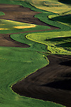 Hills patterns of cultivated newly planted wheat from Steptoe Butte State Park, Eastern Washington State USA.