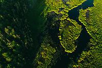 Vänga Mosse Naturreservat, West Sweden, Sweden - Västsverige, Sverige