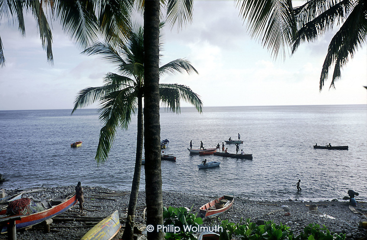 Fishermen from the village of Pointe Michel attempt to catch a shoal of tuna seen feeding close to the shore.