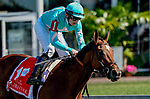 October 3, 2020: Fluffy Socks #1, ridden by jockey Trevor McCarthy, wins the Selima Stakes during Preakness Stakes Day at Pimlico Race Course in Baltimore, Maryland. John Voorhees/Eclipse Sportswire/CSM