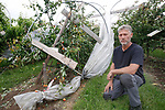 Foto: VidiPhoto<br /> <br /> DRUMPT – Fruittelers in de regio Tiel maken zaterdag de schade op na de orkaan en allesverwoestende hagelbui van vrijdagmiddag. Niet alleen zijn veel bomen beschadigd, maar zo'n 60 ha. aan hardfruit en 10 ha. aan kersen en aardbeien is volledig vernietigd. Bij de kersen was de oogst net begonnen. De Nederlandse Fruittelers Organisatie schat de schade in de Betuwe op enkele miljoenen euro's. Bij sommige telers is de complete oogst verwoest. Foto: Fruitteler Arie van Ojen uit Zoelen zit bij de pakken en zijn schade neer.