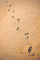 Footprints in sand at Waimanalo beach