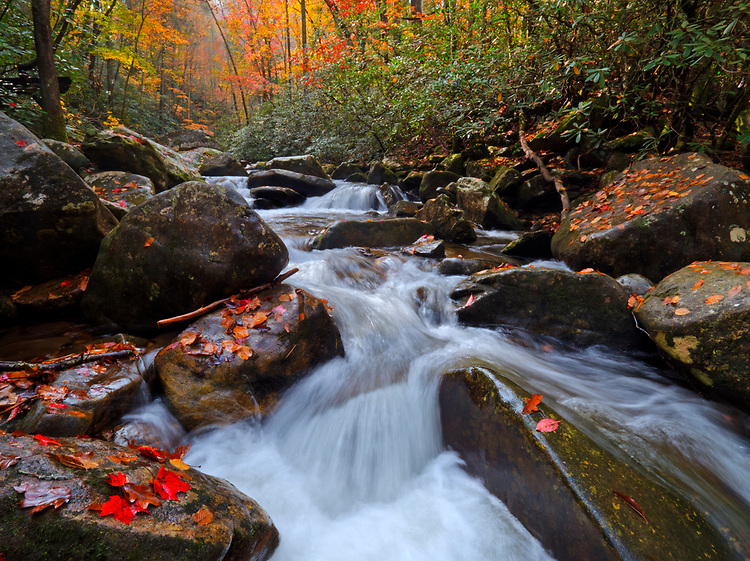 Cascades splash down Jacob Fork near Shinney Creek in the South Mountains State Park, North Carolina, USA