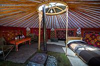 Mongolia, Bayan-Ulgii, Ulgii, Altai Mountains,  near Tsambagarav Mountain. Interior of our tent at camp.