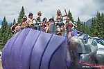 Photos from Motion Notion Music Festival 2014 near Golden, BC