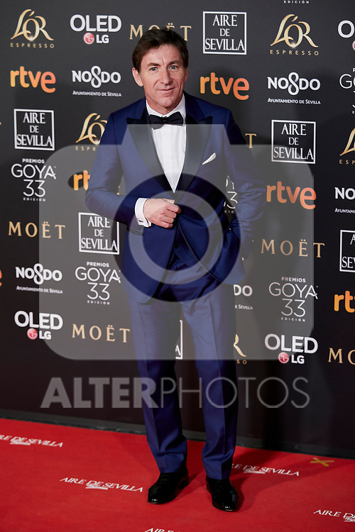 Antonio de la Torre attends to 33rd Goya Awards at Fibes - Conference and Exhibition  in Seville, Spain. February 02, 2019. (ALTERPHOTOS/A. Perez Meca)