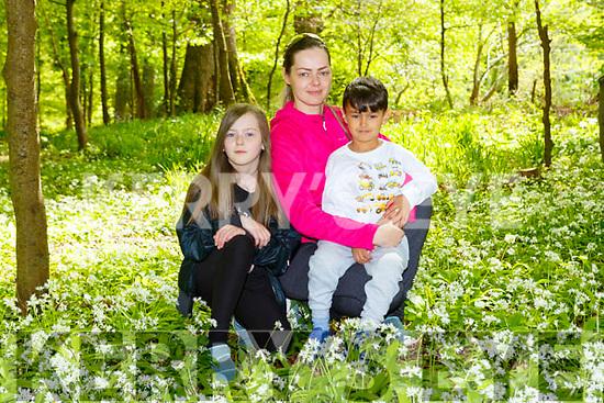 Lily Fabian with Elizabeth and Aidan Fabian admiring the wild garlic on their walk in Killarney National Park on Saturday