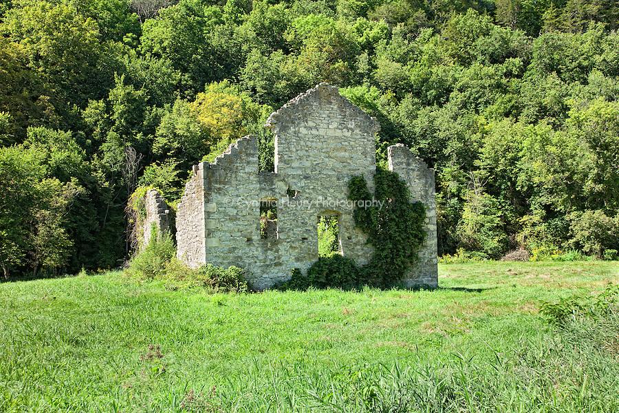 Derelict Structure Lanesboro, Harmony MN area.
