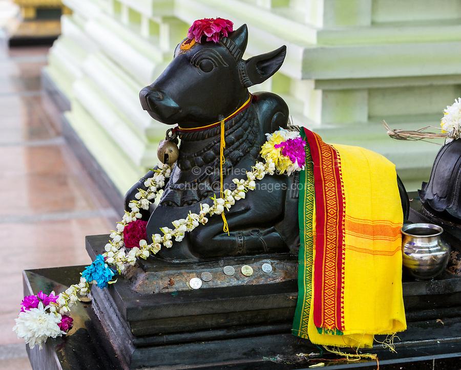 Nandi, Sacred Bull of Shiva, Sri Maha Mariamman Hindu Temple, George Town, Penang, Malaysia.