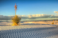 White ripples - White Sands National Monument - New Mexico