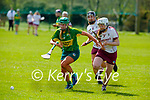 Kerry's Michell Costello and Galway's Lisa Casserly race for possession in the National Camogie league in Lixnaw on Saturday.
