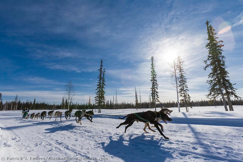 Musher Blayne Streeper, 2007 Open North American Championship sled dog race (the world's premier sled dog sprint race) is held annually in Fairbanks, Alaska.