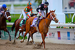 February 21, 2015:  I'm a Chatterbox with Florent Geroux up wins the Rachel Alexandra Stakes at the New Orleans Fairgrounds Risen Star Stakes Day. Steve Dalmado/ESW/CSM