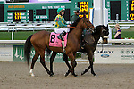 February 21, 2015: Keen Ice with James Graham up in the Risen Star Stakes at the New Orleans Fairgrounds Risen Star Stakes Day. Steve Dalmado/ESW/CSM