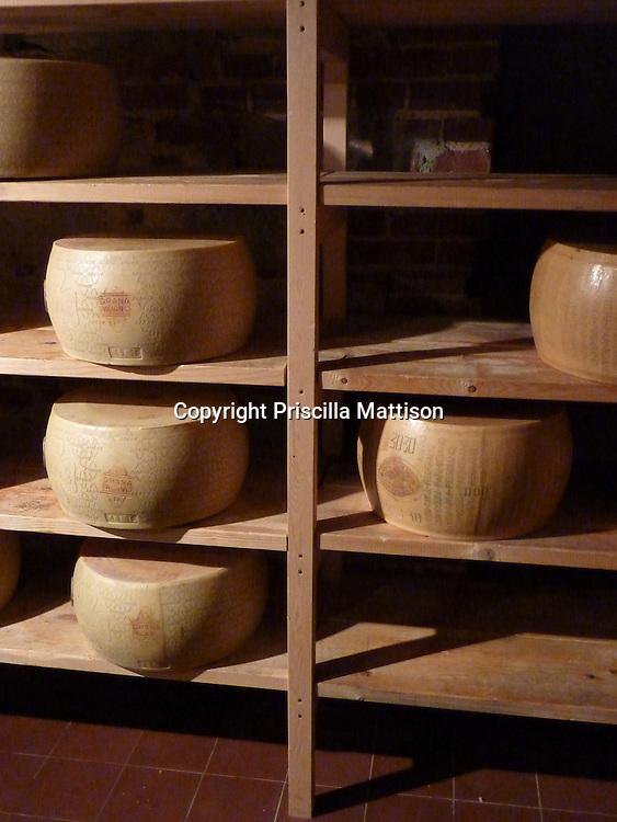 Shelves of cheese wheels