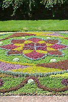 Knot garden patterns - Using succulent plants as woven groundcover, sempervivum, sedum, alternathera, for a colorful carpet