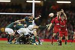 Springbok scrum half Fourie Du Preez kicks the ball from the back of the breakdown.<br /> <br /> 2013 Dove Men Series<br /> Wales v South Africa<br /> Millennium Stadium<br /> 09.11.13<br /> ©Steve Pope-Sportingwales