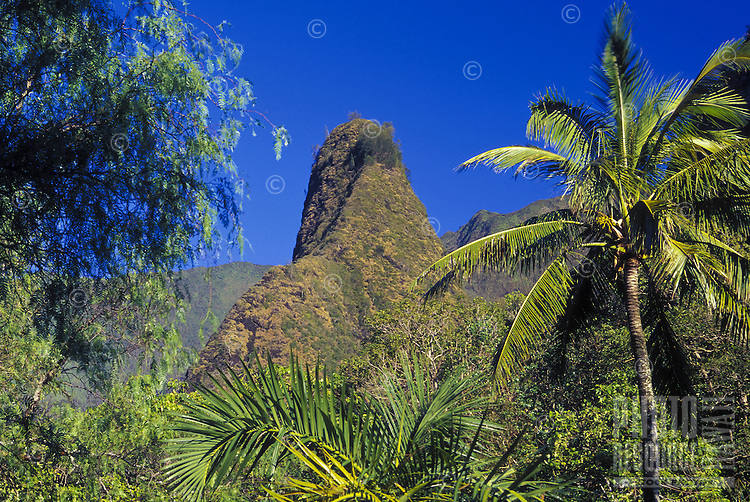 Iao Needle in Iao Valley State Park, Maui is framed by a trees.