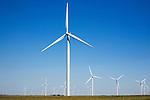 USA, Illinois, wind turbines in soybean field