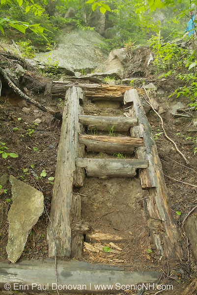 Appalachian Trail - A trail ladder on Wildcat Ridge Trail in the White Mountains of New Hampshire.