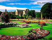 Tom Mackie, FLOWERS, photos, Abbey Gardens, Bury St. Edmonds, Suffolk, GBTM990493-1,#F# Garten, jardín