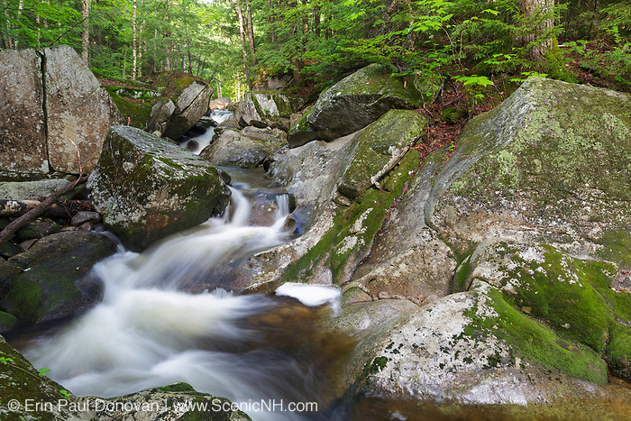 Cascade on Walker Brook in Woodstock, New Hampshire during the summer months.