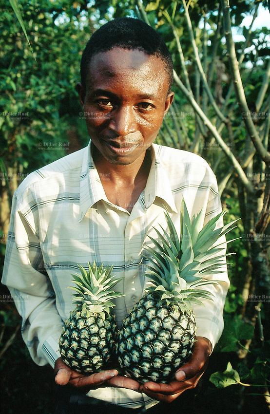 Uganda. Kayunga district. Natette. A farmers holds in his hands two fesh pineapple just plucked in his garden.© 2004 Didier Ruef