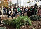 Oct. 22, 2011; Rev. John Jenkins, C.S.C. blesses a memorial garden dedicated to the memory of Declan Sullivan...Photo by Matt Cashore/University of Notre Dame