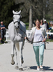 April 23, 2014: Catch A Star and Caitlin Silliman during the first horse inspection at the Rolex Three Day Event in Lexington, KY at the Kentucky Horse Park.  Candice Chavez/ESW/CSM