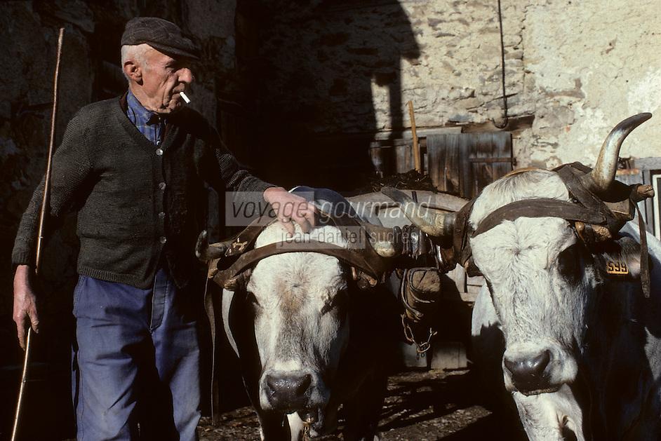 Europe/France/Midi-Pyrénées/09/Ariège/Pays de Foix/Serres-sur-Arget : Marius Jubre et son attelage<br /> PHOTO D'ARCHIVES // ARCHIVAL IMAGES<br /> FRANCE 1980