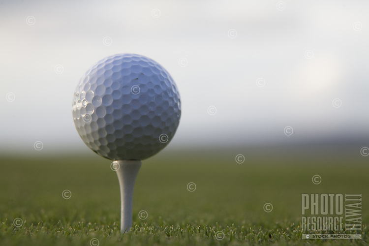 Close up of golf ball on a tee  on a green