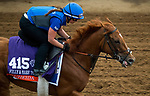 DEL MAR, CA - OCTOBER 30: Wuheida, owned by Godolphin Stable Lessee and trained by Charlie Appleby, exercises in preparation for Breeders' Cup Filly & Mare Turf at Del Mar Thoroughbred Club on October 30, 2017 in Del Mar, California. (Photo by Jon Durr/Eclipse Sportswire/Breeders Cup)